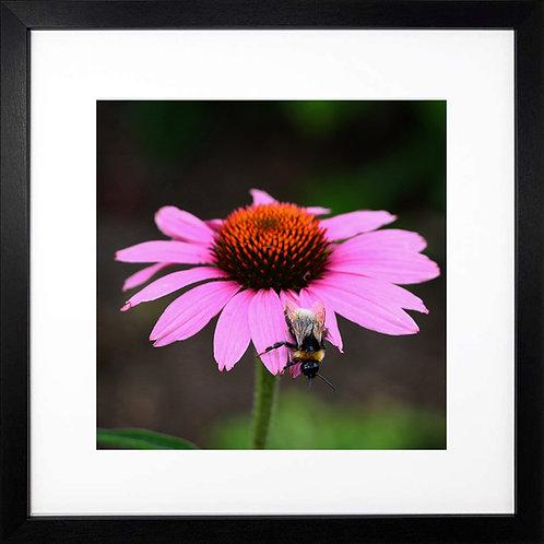 Square Bumblebee print