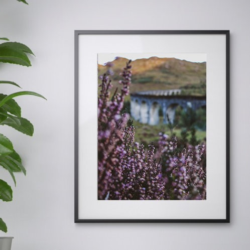 A3 Heather In Focus print