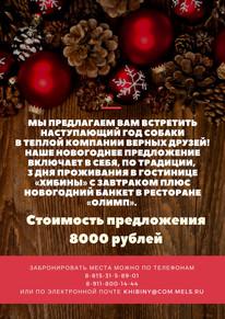 Наступающий 2018 Год Собаки!