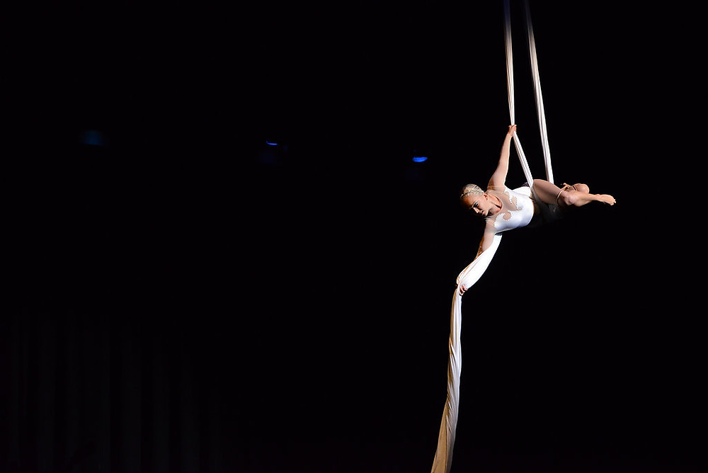 Aerial silk performer, aerialist