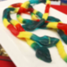 Gummy_snake_8049.jpg