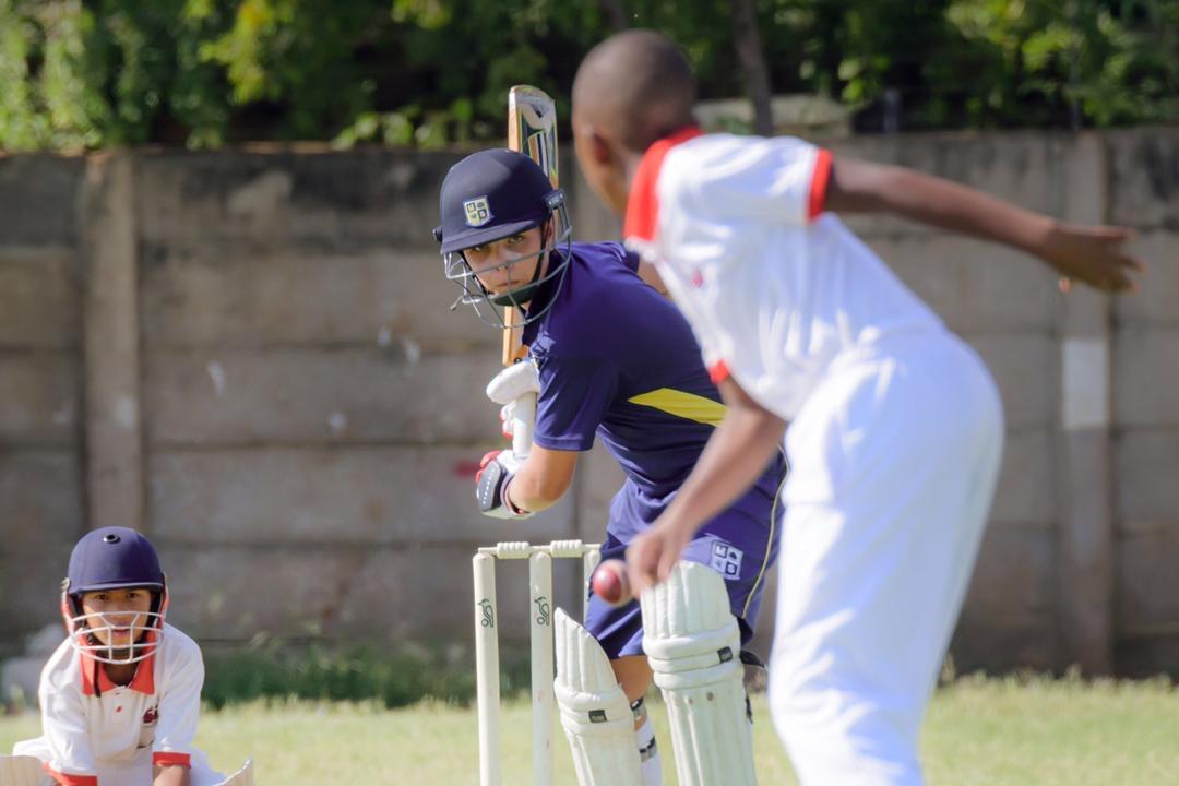 Cricket 2019