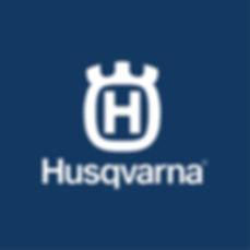 2019 Blue Logo.jpg