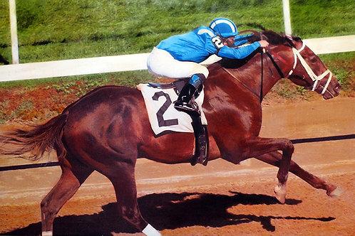 Belmont Winner