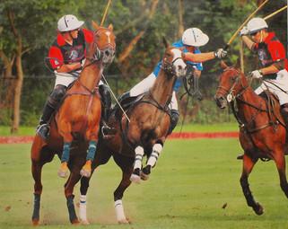 Meadowbrook Polo