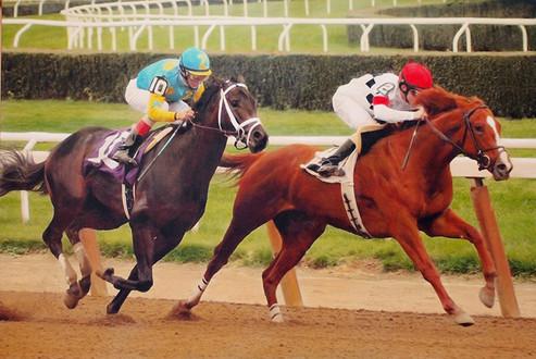 Belmont Stretch Race