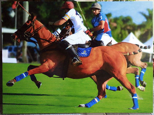 Wellington Polo Players