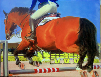 Jumping Competitor I