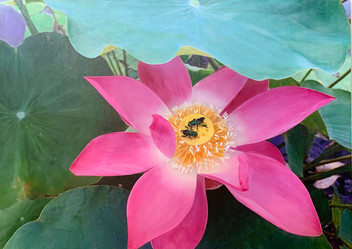 Lotus Flower with Visitors