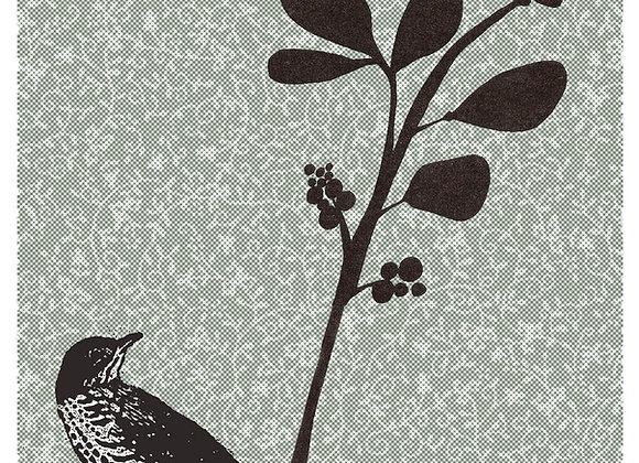 bird and wasps 3 x 5 blank greeting card