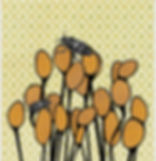 beetles on pods card.jpg