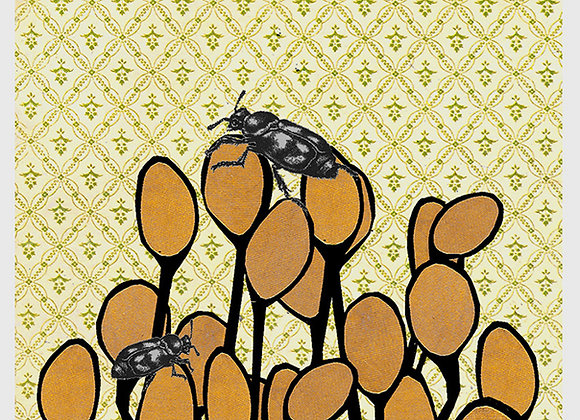 Beetles and Pods 3 x 5 blank greeting card