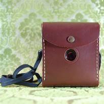 Kodak Camera Caase (sold)