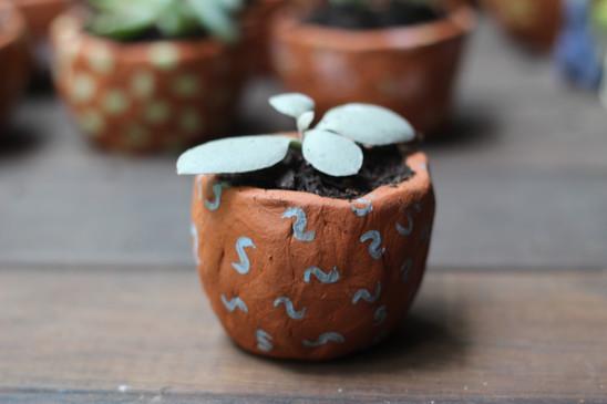 Tiny planter