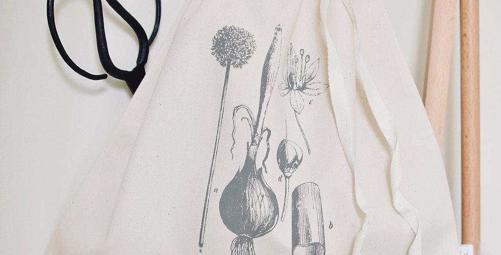Botanique - coton