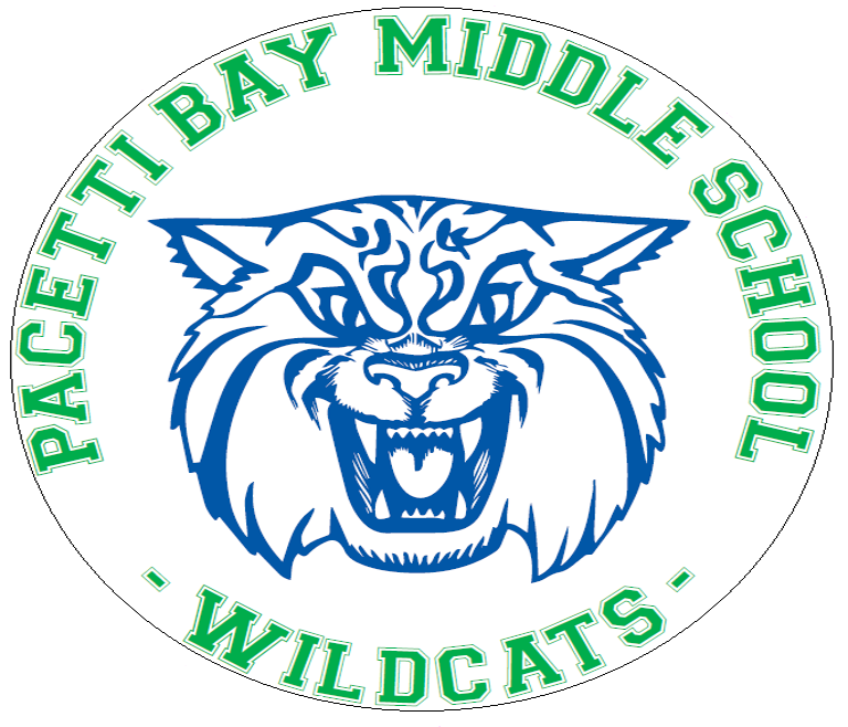 Wildcats Car Magnet