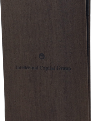 Intellectual Capital Group - 378820.png
