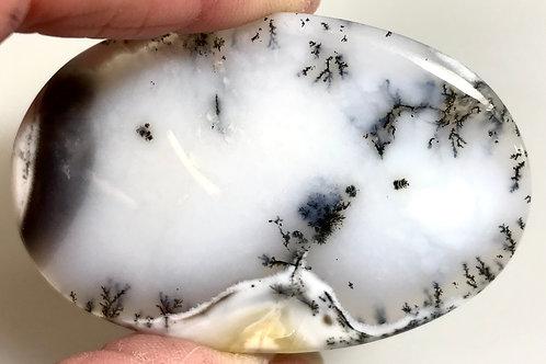 Loose Dendritic Agate #2497