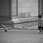 Curiosity - San Francisco, California