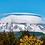 Thumbnail: Majestic - Mount Rainier, Washington