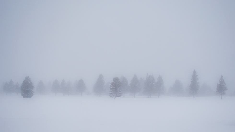 Ahhh, Winter - South Lake Tahoe, California