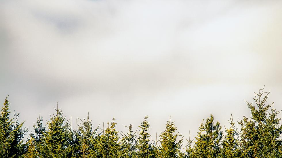 Autumn Clouds - Issaquah, Washington