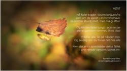 FreeFalling_Rilke