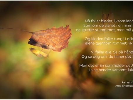 Nå faller blader