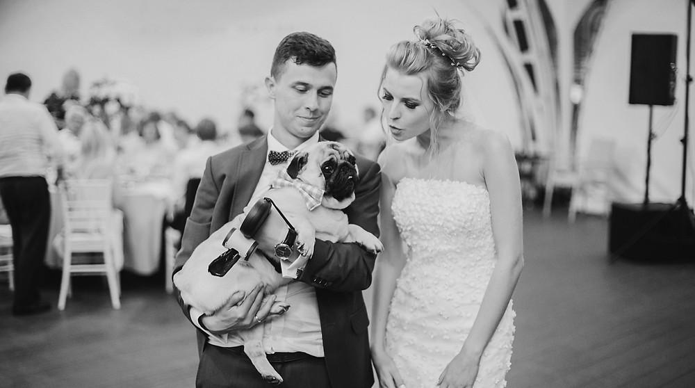 manchester dog friendly wedding venues
