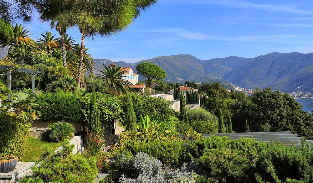 wedding venue in montenegro - winery