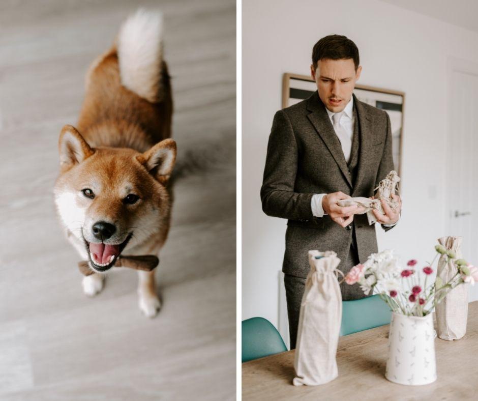 dog friendly wedding photographer cheshire