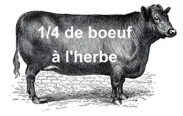 1/4 de boeuf - Panier mélanger de 90lb