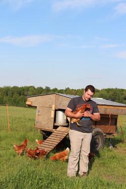 Nos poules avec Jacob