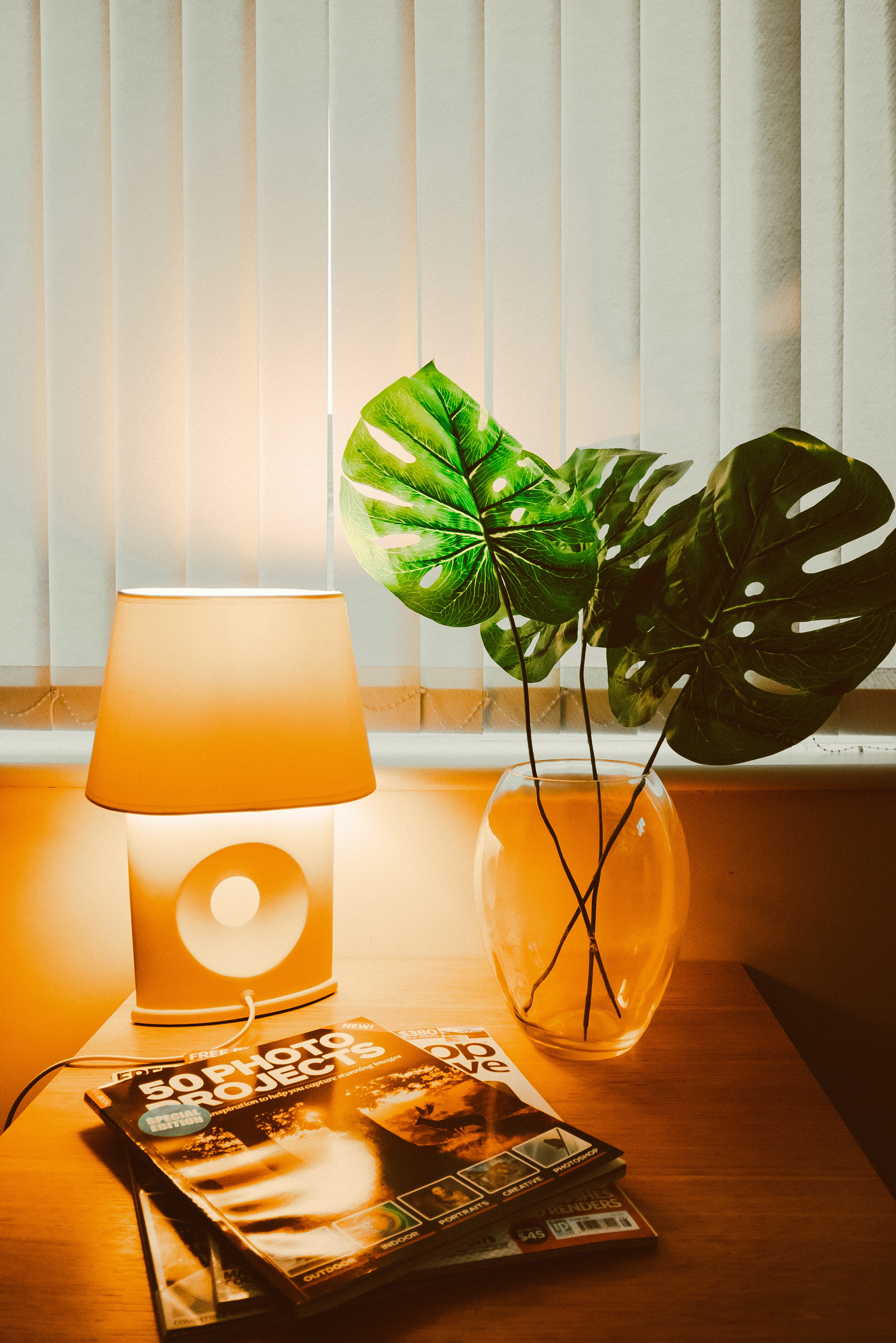 photo-of-plants-near-lampshade-1966747