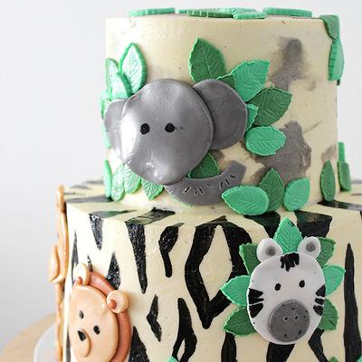 Safari Cake-square.jpg