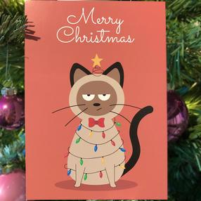 Kerstkaart - Kat