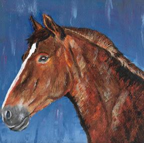 Voskleurig paard