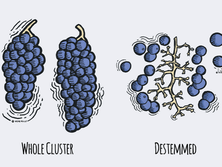 Whole cluster wines deliver a whole lotta flavor