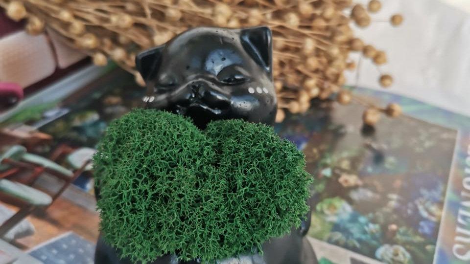 Котенок из бетона с пузиком из мха (Черный)