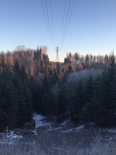 Vi utfører både undervegetasjonsrydding og bredding av HS trasé for everk. Her fra 132 kW i Østfold.