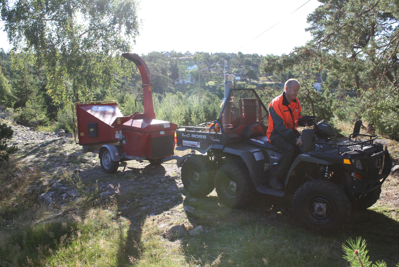 Fjerning av kvist på Hankø