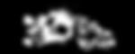 VXCON (Web).png
