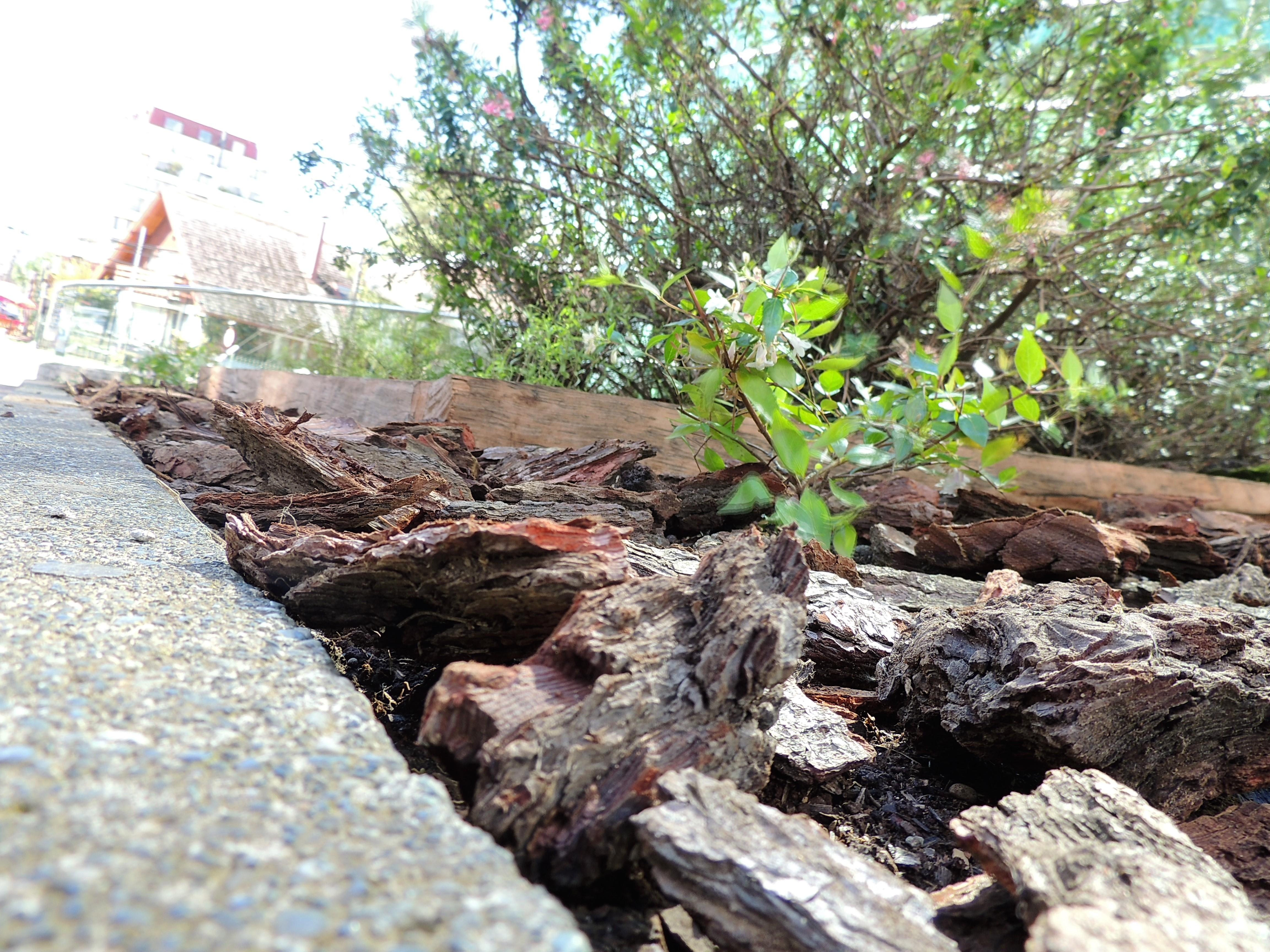 paisajismo madera jardinería valdivia