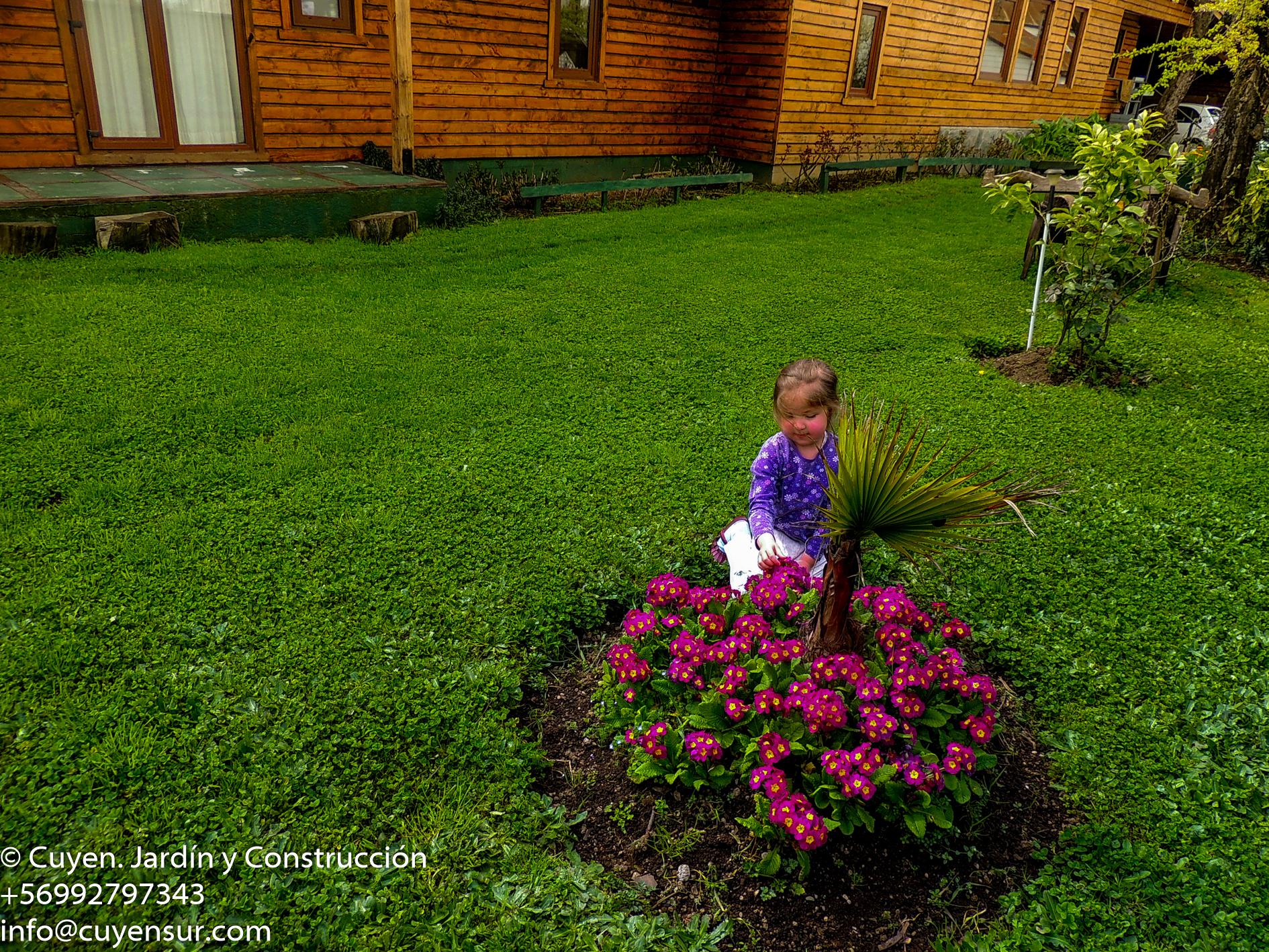 #patagonia_#surdechile_#lagoranco_#jardín_#paisajismo_#diseño_#futrono_#cuencadelranco-9