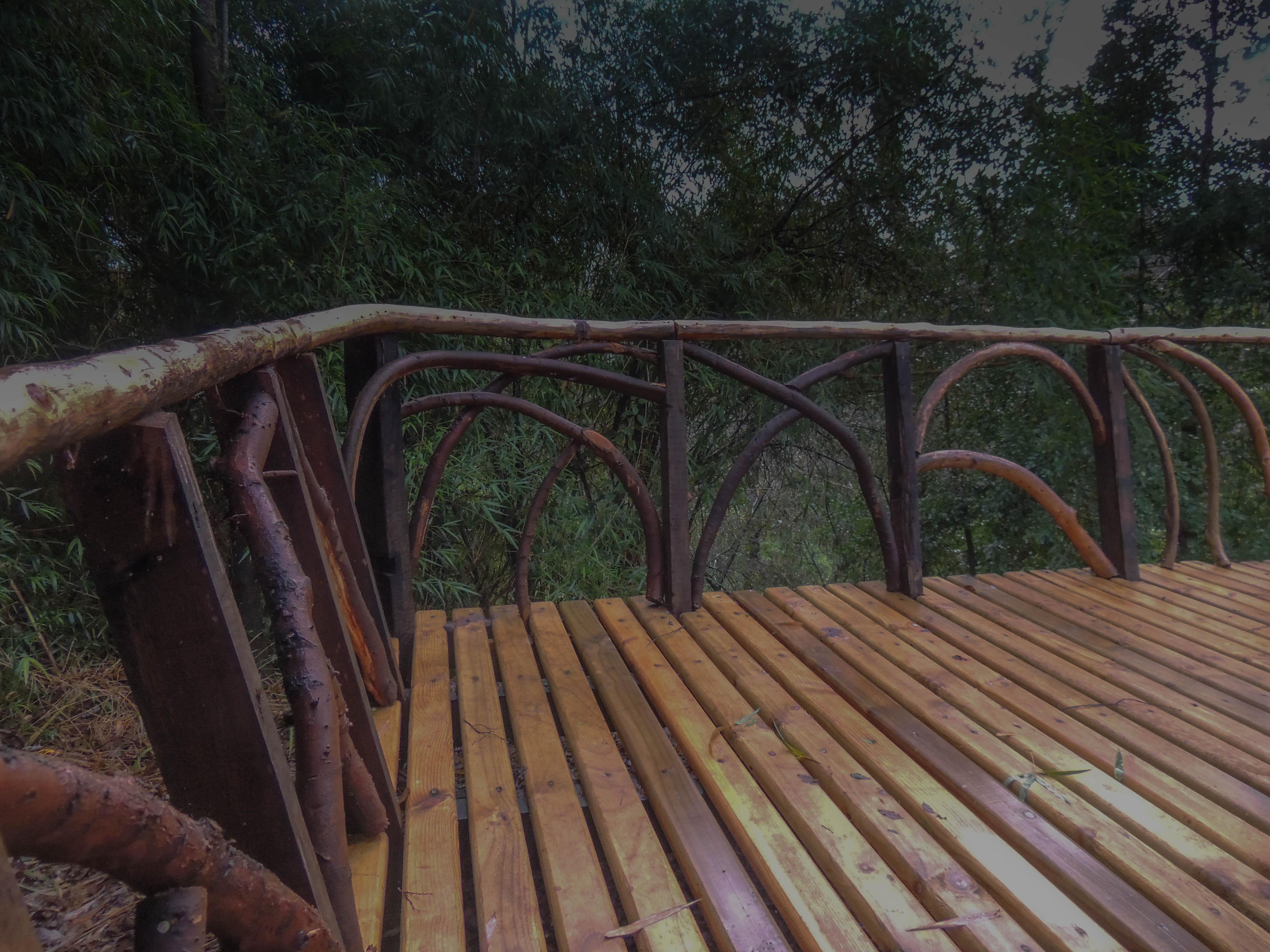 #diseño_#jardines_#futrono_#patagonia_#surdechile_#lagoranco_(11)