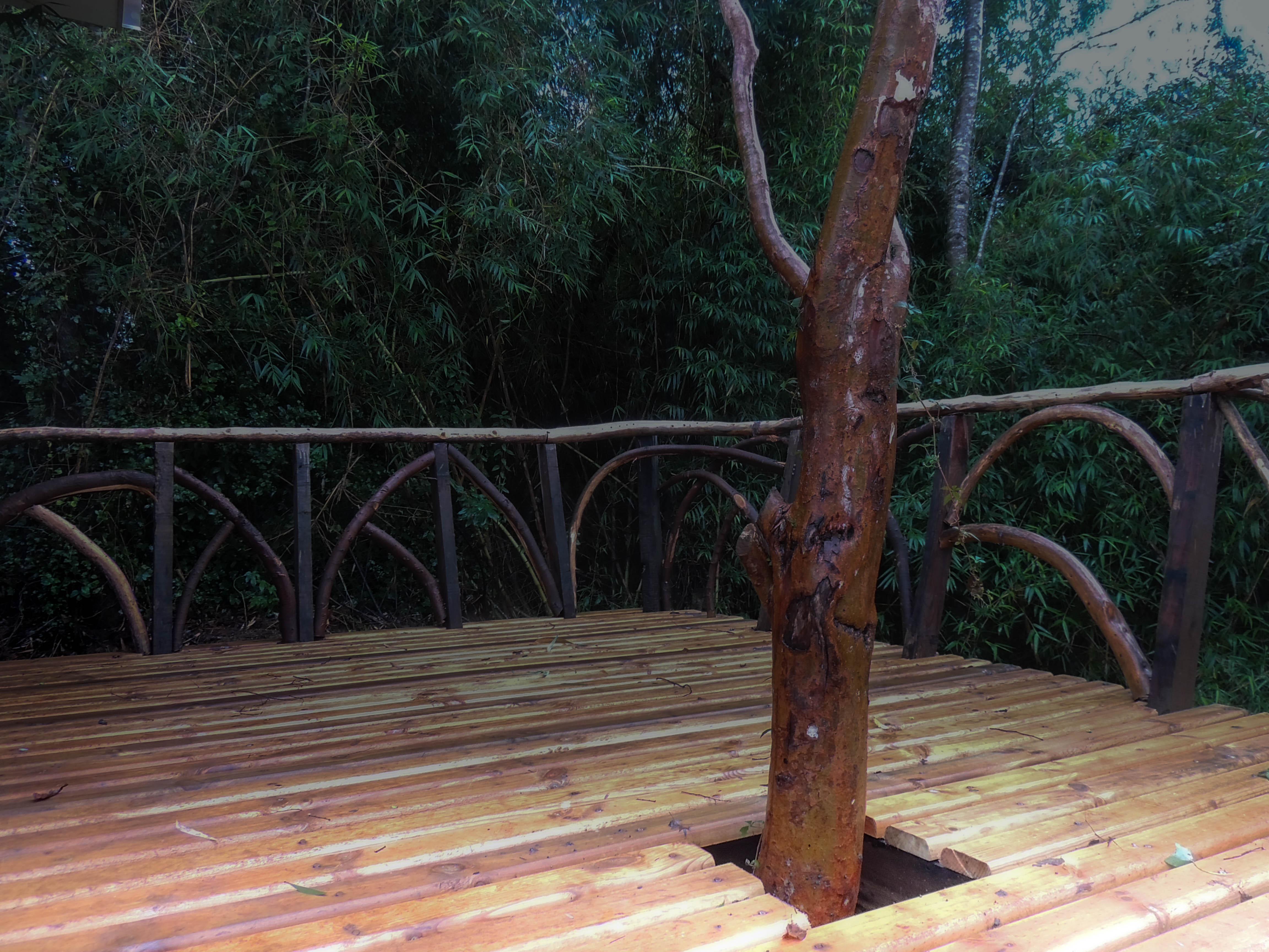 #diseño_#jardines_#futrono_#patagonia_#surdechile_#lagoranco_(13)