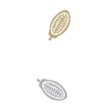 Cocoa-Beans.png