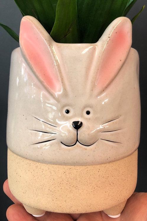 "Yup- It's a Rabbit! 4"" Pot"