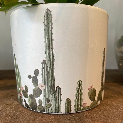 """Cactus pot 6"""""""