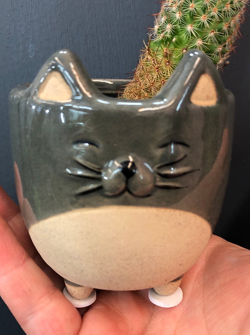 Wee Cat Pot 3""